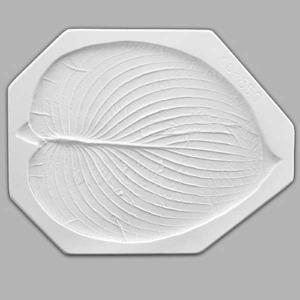 Large Hosta Leaf 大玉簪葉 14.25